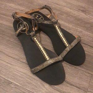Jack Rogers Gold Snake Print Sandals size 9